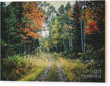 Maine Back Road Wood Print by George DeLisle