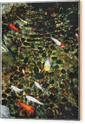 Make A Wish Koi Fishes Wood Print by Danielle  Parent