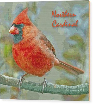 Wood Print featuring the photograph Male Cardinal On Tree Branch by A Gurmankin