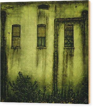 Many Generations Lived Here Wood Print by Gun Legler