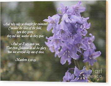 Matthew 6 Verses 28 And 29 Wood Print by Vicki Maheu