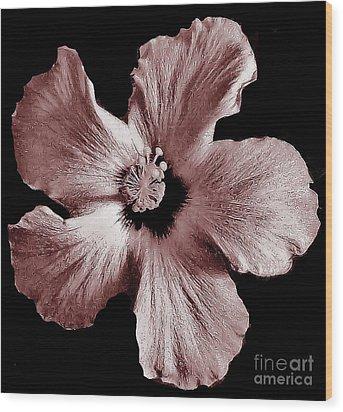 Mauve Hibiscus Wood Print by Marsha Heiken