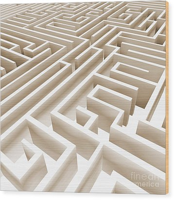 Maze Wood Print by Stefano Senise