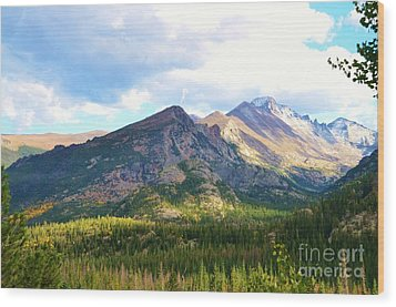 Meadow And Mountains Wood Print by Kathleen Struckle
