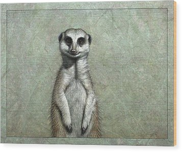 Meerkat Wood Print by James W Johnson