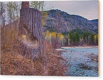Methow Riverbank Wood Print by Omaste Witkowski