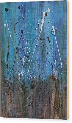 Starry Nights Wood Print by Lauren Petit
