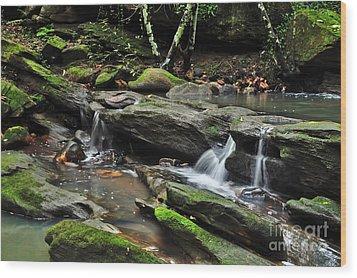 Mini Waterfalls Wood Print by Kaye Menner