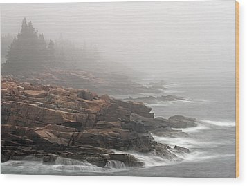 Misty Acadia National Park Seacoast Wood Print by Juergen Roth
