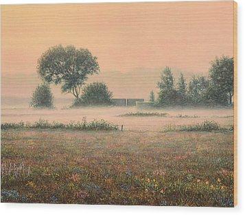 Misty Morning Wood Print by James W Johnson