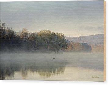 Misty Morning Sunrise Wood Print by Christina Rollo