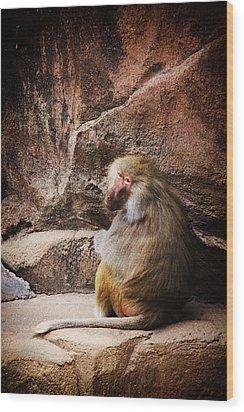 Monkey Business Wood Print by Karol Livote