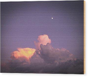 Moon Speck Wood Print by Robert J Andler