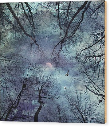 Moonlight Wood Print by Stelios Kleanthous
