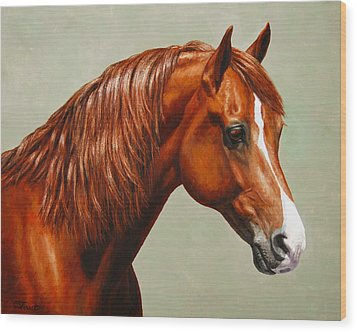Morgan Horse - Flame Wood Print by Crista Forest
