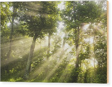 Morning Bursting Forth Wood Print by Andrew Soundarajan