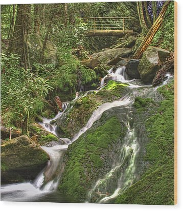 Mossy Creek Wood Print by Debra and Dave Vanderlaan