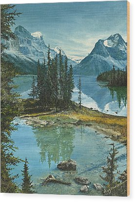Mountain Island Sanctuary Wood Print by Mary Ellen Anderson