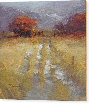 Mountain Path Wood Print by Richard Robinson