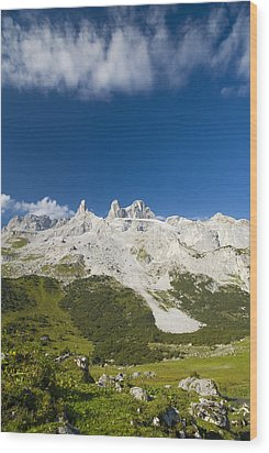 Mountains In The Alps Wood Print by Chevy Fleet