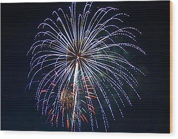 4th Of July Fireworks 12 Wood Print by Howard Tenke
