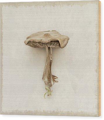 Mushroom Wood Print by Lucid Mood