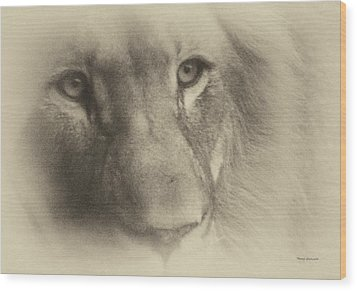 My Lion Eyes In Antique Wood Print by Thomas Woolworth