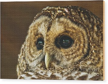 My What Big Eyes You Have Wood Print by Lois Bryan