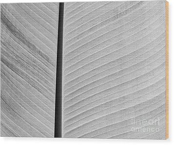 Natural Lines Wood Print by Sabrina L Ryan