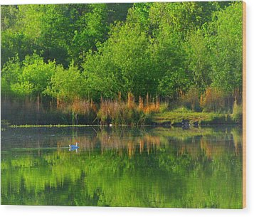 Naturally Reflected Wood Print by Joyce Dickens