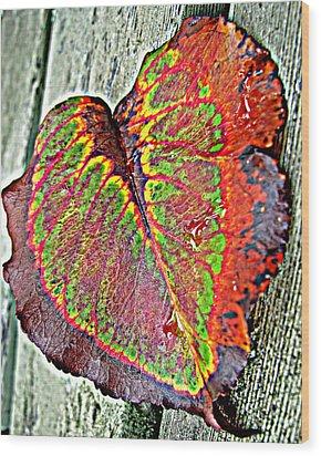 Nature's Glory Wood Print by Barbara McDevitt