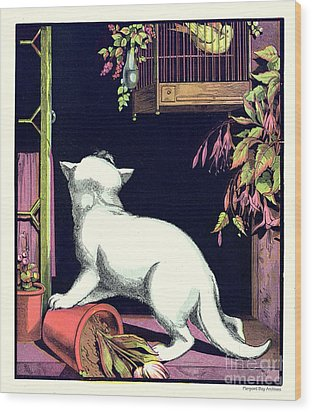 Naughty Cat Eyes A Yellow Bird In Cage Wood Print by Pierpont Bay Archives