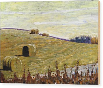 New Haybales Wood Print by Charlie Spear