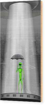 No Intelligent Life Here Wood Print by Mike McGlothlen