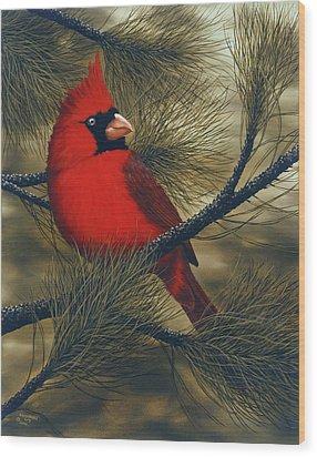 Northern Cardinal Wood Print by Rick Bainbridge