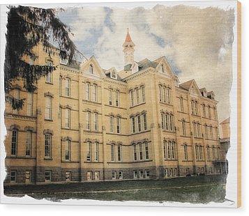 Northern Michigan Asylum Wood Print by Michelle Calkins