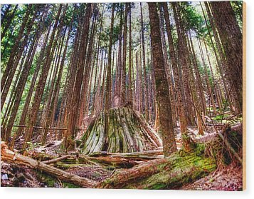 Northwest Old Growth Wood Print by Spencer McDonald