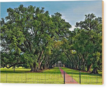 Oak Alley Plantation 2 Wood Print by Steve Harrington