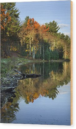 Oakley Corners State Forest Wood Print by Christina Rollo