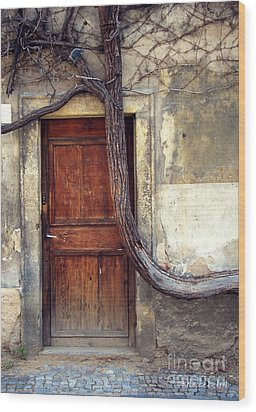 Oh Bended Tree Wood Print by Rebecca Pickrel