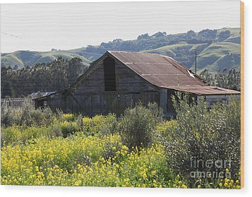 Old Barn In Sonoma California 5d22232 Wood Print by Wingsdomain Art and Photography