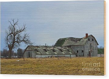 Old Barns In The Heartland Wood Print by Alys Caviness-Gober