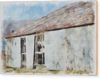 Old Metel Shed Painted Effect Wood Print by Debbie Portwood
