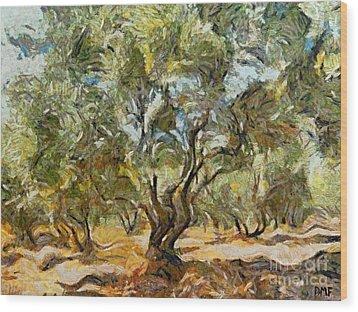 Olive Grove Wood Print by Dragica  Micki Fortuna