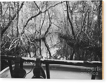 On Board An Airboat Ride Through A Mangrove Jungle In Everglades City Florida Everglades Wood Print by Joe Fox