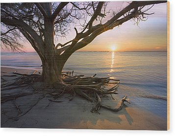 On The Edge Of The Surf Wood Print by Debra and Dave Vanderlaan