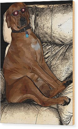 One Cool Dog Wood Print by Mim White