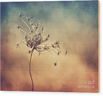 Only Wood Print by Diana Kraleva