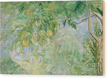 Orange Tree Branches Wood Print by Berthe Morisot
