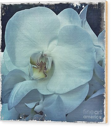 Orchid Wood Print by Nina Prommer